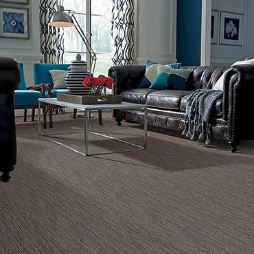 Anso® Nylon Carpet | POTTSBORO, TX